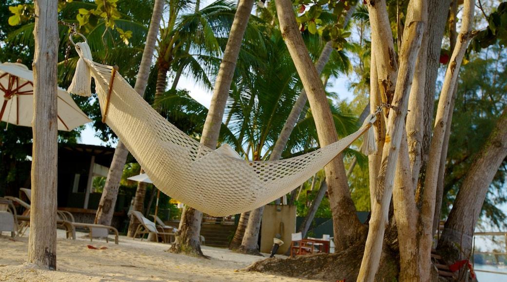 Koh Samui toont een strand en tropische uitzichten