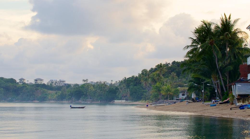 Bo Phut Beach toont een zandstrand, varen en tropische uitzichten