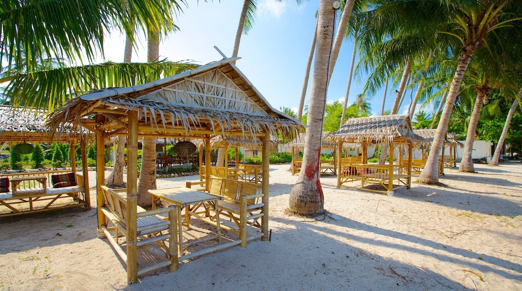 Pangka Beach bevat een strand, tropische uitzichten en landschappen