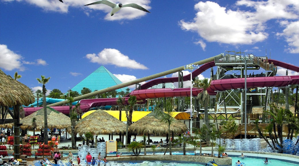 Galveston Schlitterbahn Waterpark showing a pool, a water park and rides