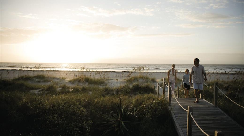 Hilton Head showing a sunset, a sandy beach and landscape views
