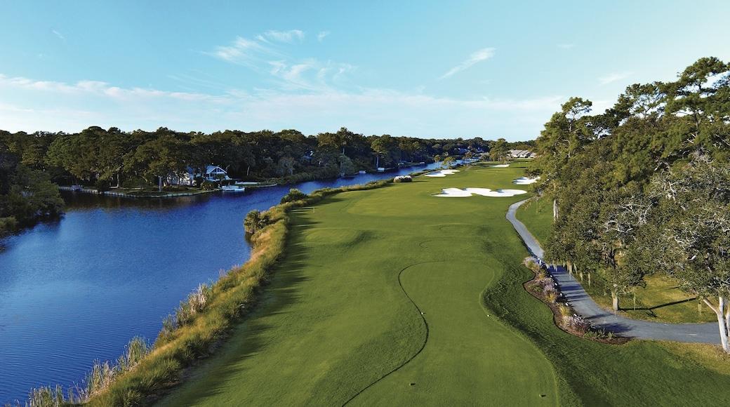 Hilton Head showing golf