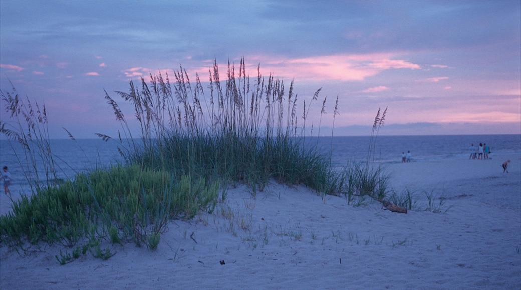 Gulf Shores which includes a sandy beach and a sunset