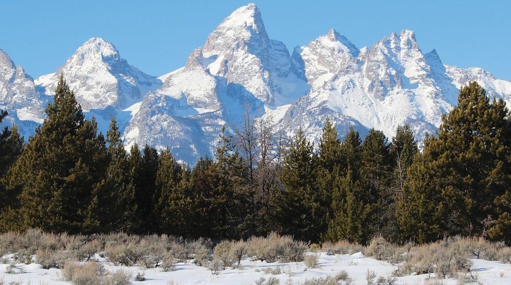 Jackson Hole joka esittää vuoret, maisemat ja lunta