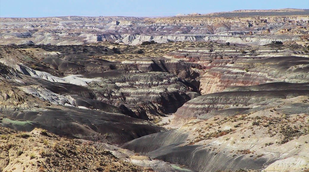 Northern New Mexico showing landscape views and a gorge or canyon