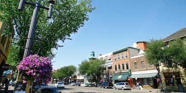 Old Strathcona showing skyline, a city and street scenes