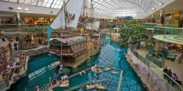 West Edmonton Mall which includes a pond, shopping and central business district