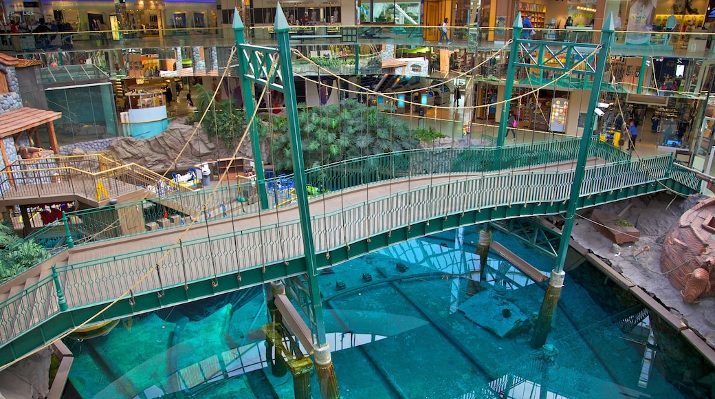 West Edmonton Mall featuring interior views, shopping and a bridge