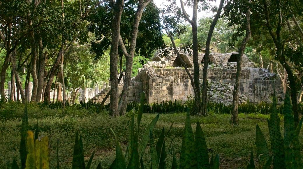 Chichén Itzá mostrando una ruina y patrimonio de arquitectura