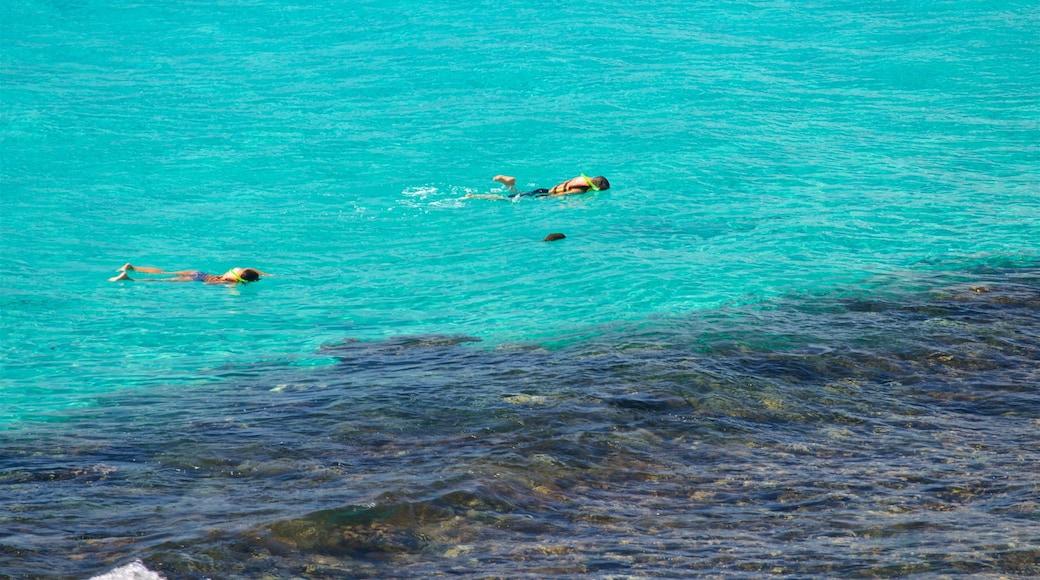 Isla Mujeres showing snorkeling, tropical scenes and general coastal views