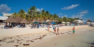 Norte Beach which includes tropical scenes, general coastal views and a sandy beach