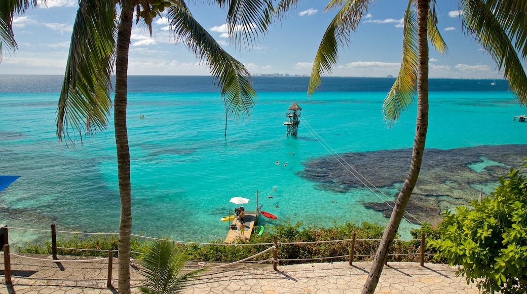 Garrafon Natural Reef Park featuring tropical scenes and general coastal views