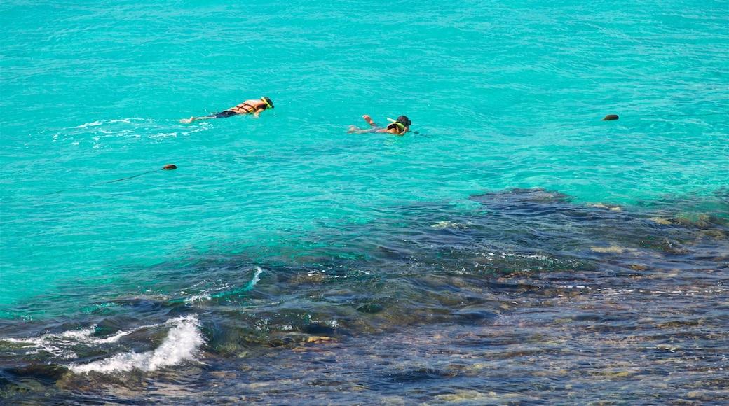 Garrafon Natural Reef Park showing tropical scenes, snorkeling and general coastal views