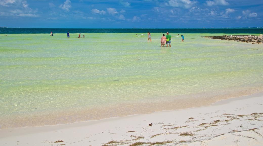 Playa Langosta inclusief tropische uitzichten, een zandstrand en algemene kustgezichten