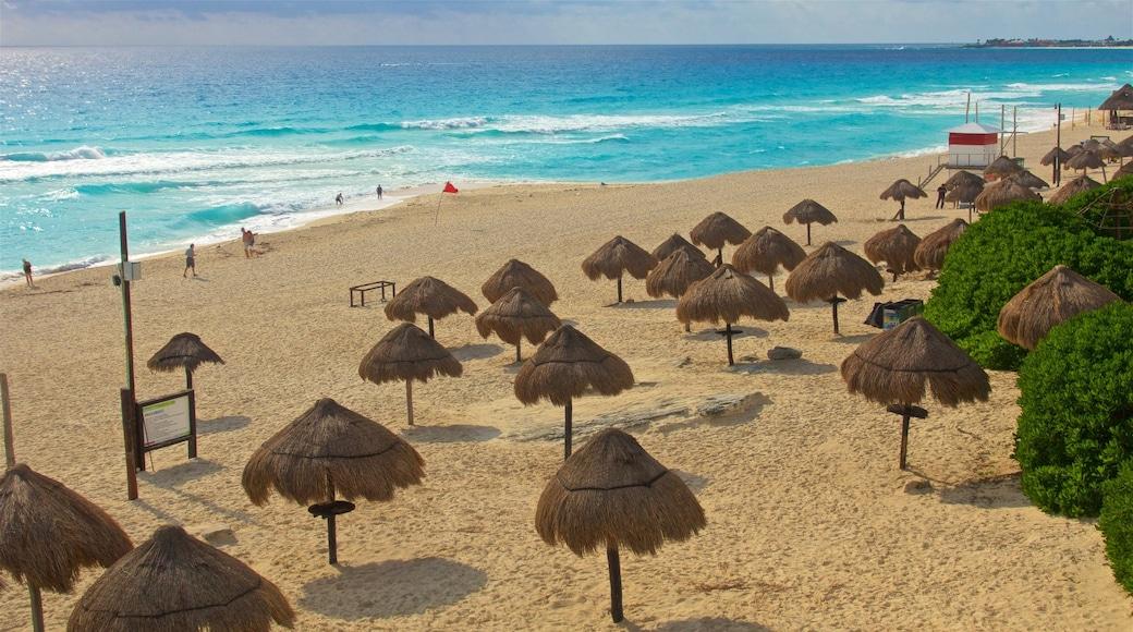Playa Delfines showing general coastal views, a sandy beach and tropical scenes