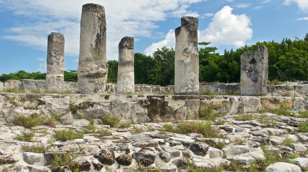 El Rey Ruins featuring building ruins