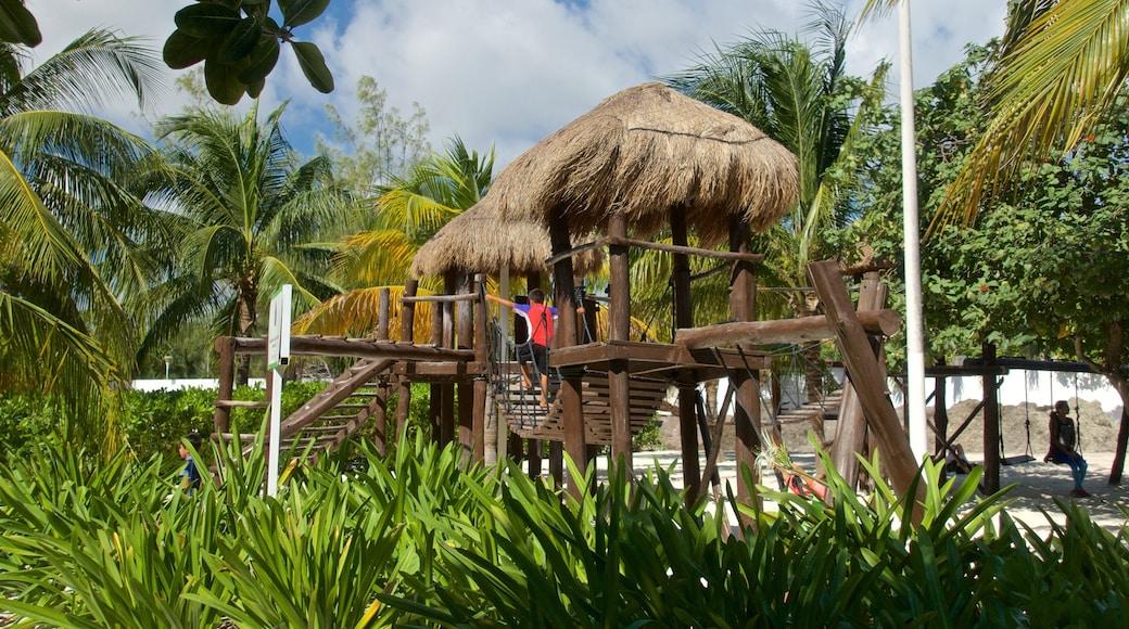 Playa Las Perlas bevat tropische uitzichten en een zandstrand