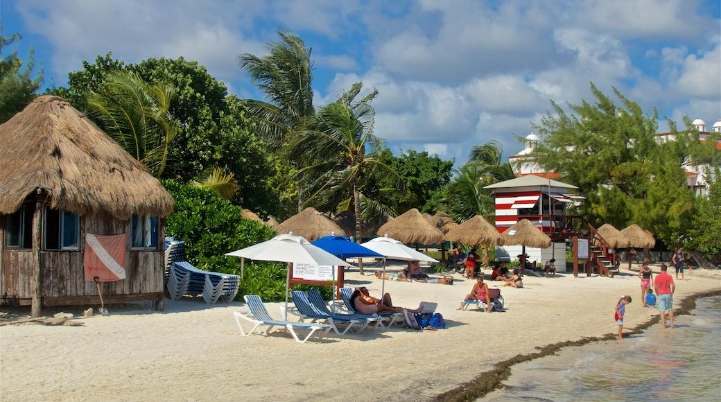 Playa las Perlas que incluye una playa, escenas tropicales y vistas generales de la costa