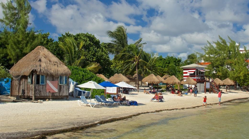 Playa Las Perlas bevat een zandstrand, tropische uitzichten en algemene kustgezichten