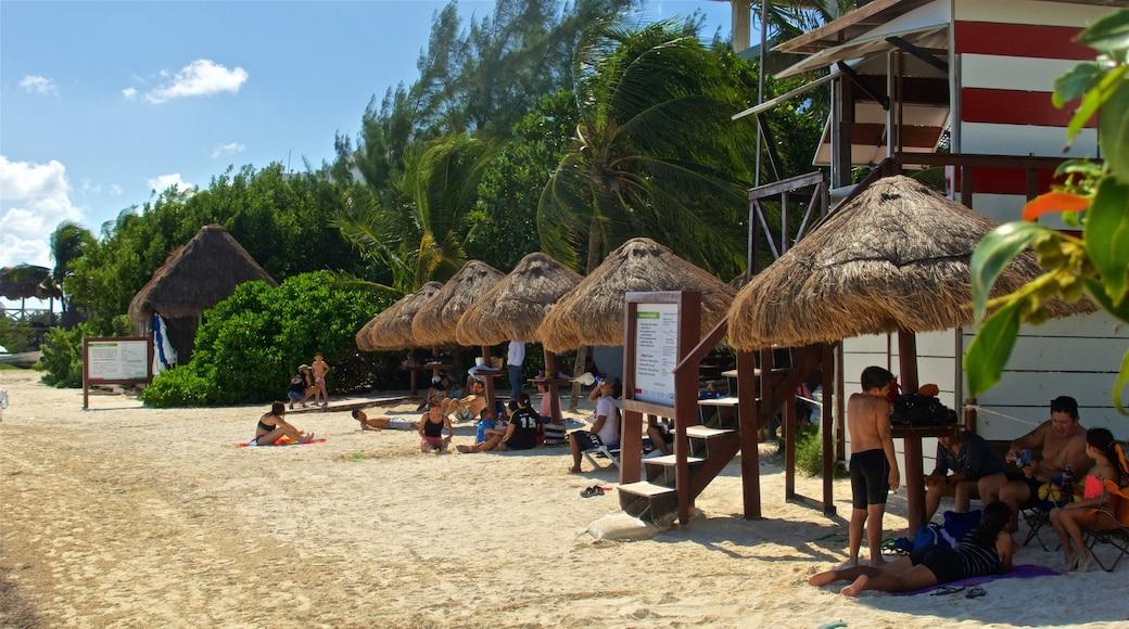 Playa Las Perlas bevat algemene kustgezichten, een zandstrand en tropische uitzichten