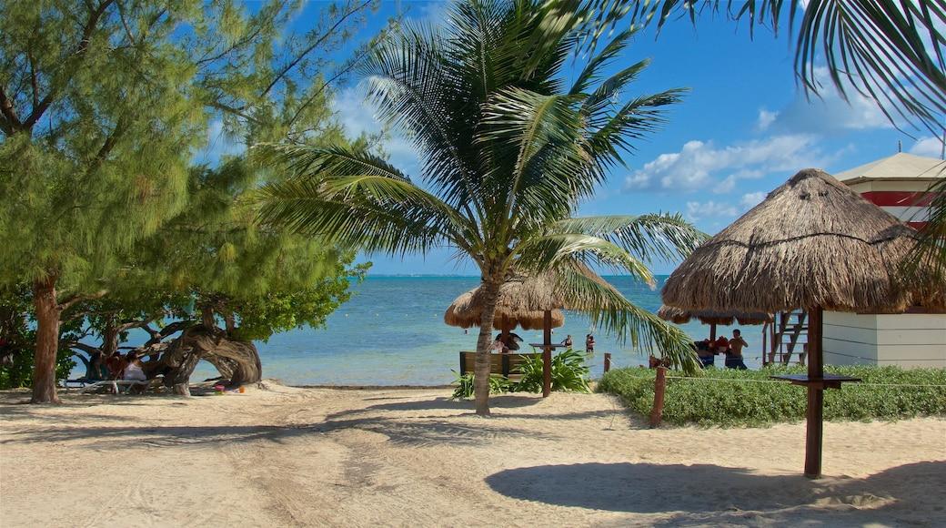 Playa las Perlas ofreciendo una playa de arena, vistas generales de la costa y escenas tropicales