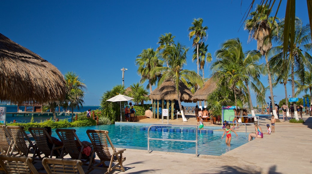 Dolphin Discovery showing a pool, a luxury hotel or resort and tropical scenes