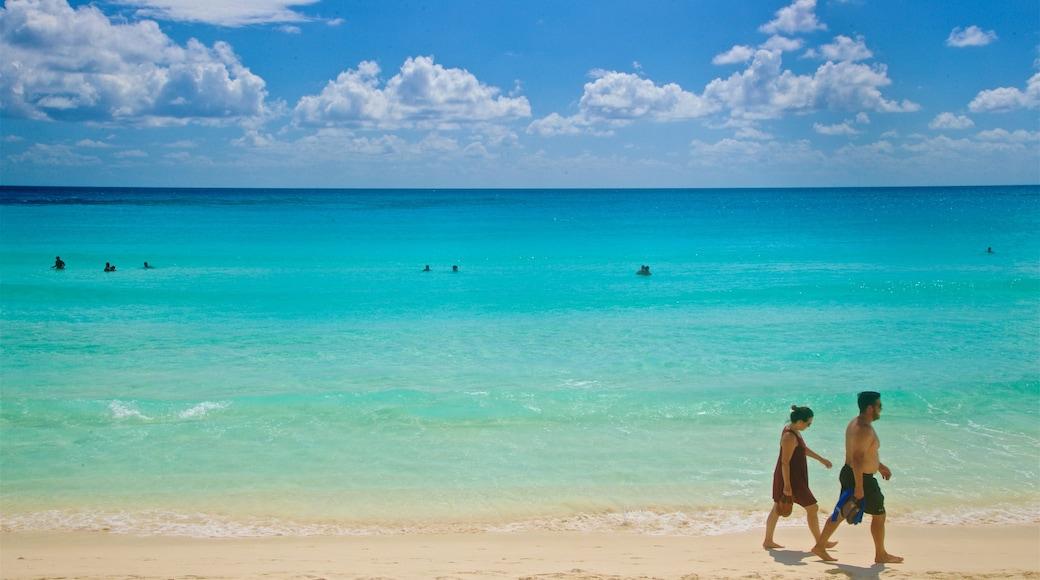 Playa Chac Mool toont tropische uitzichten, een zandstrand en algemene kustgezichten