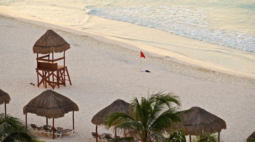 Playa Gaviota Azul ofreciendo una playa, escenas tropicales y vistas generales de la costa