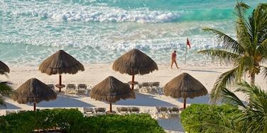 Gaviota Azul Beach featuring tropical scenes, general coastal views and a sandy beach