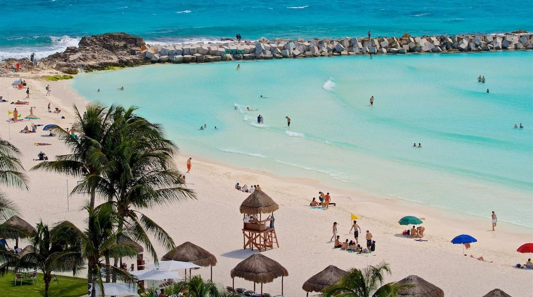 Playa Gaviota Azul ofreciendo una playa, natación y escenas tropicales