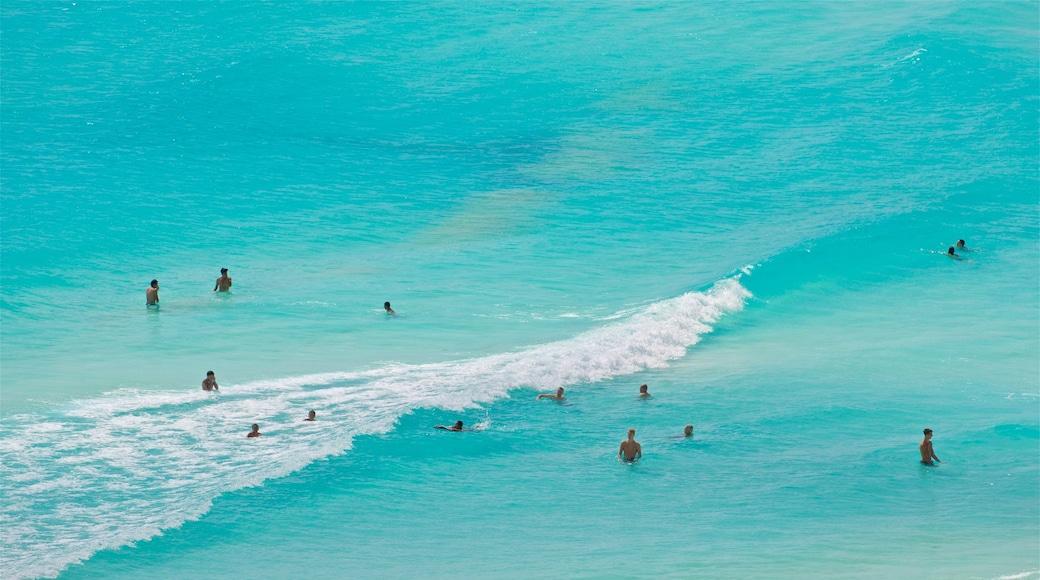 Playa Gaviota Azul ofreciendo escenas tropicales, vistas generales de la costa y natación