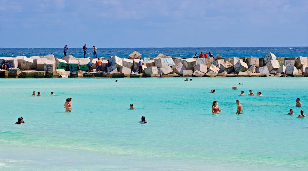 Playa Gaviota Azul ofreciendo escenas tropicales, natación y vistas generales de la costa