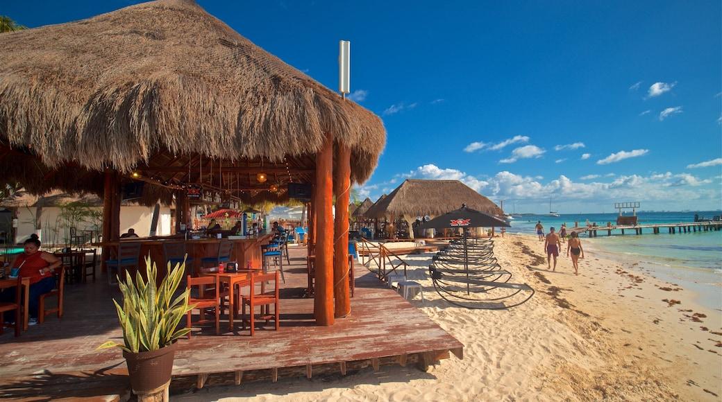 Playa Norte mostrando un bar de playa, escenas tropicales y vistas generales de la costa