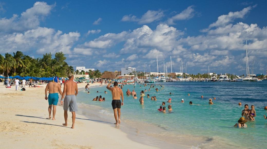 Playa Norte que incluye natación, una playa y vistas generales de la costa