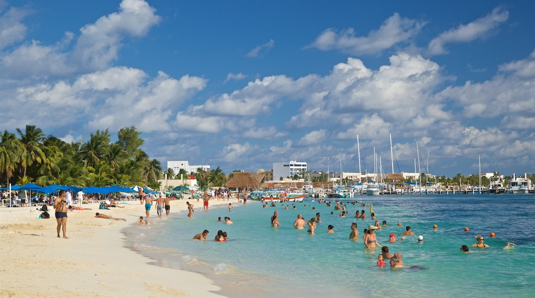 Playa Norte ofreciendo una playa, natación y escenas tropicales
