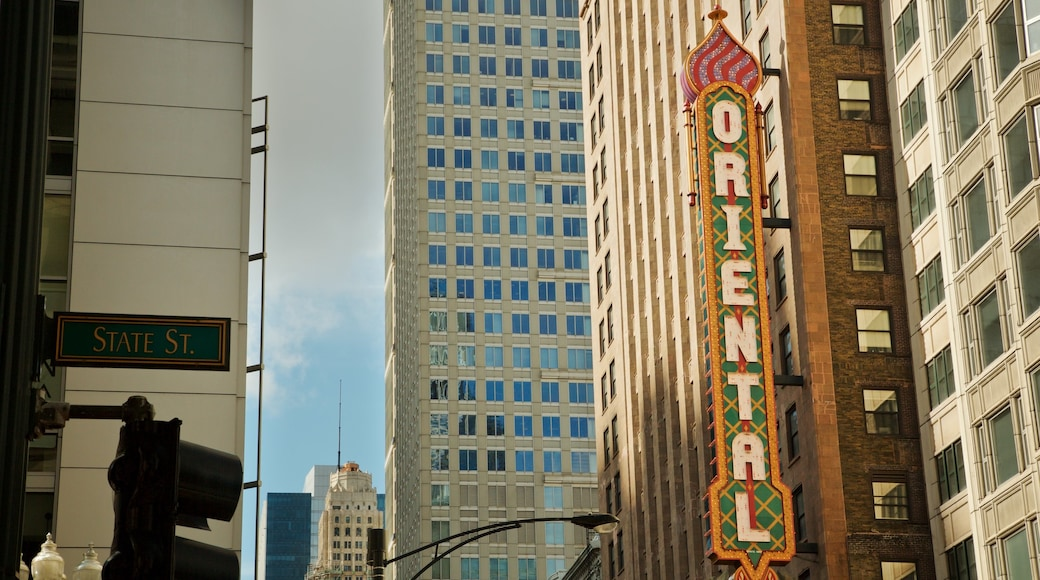 ย่านดาวน์ทาวน์ของชิคาโก ซึ่งรวมถึง ป้าย และ เมือง