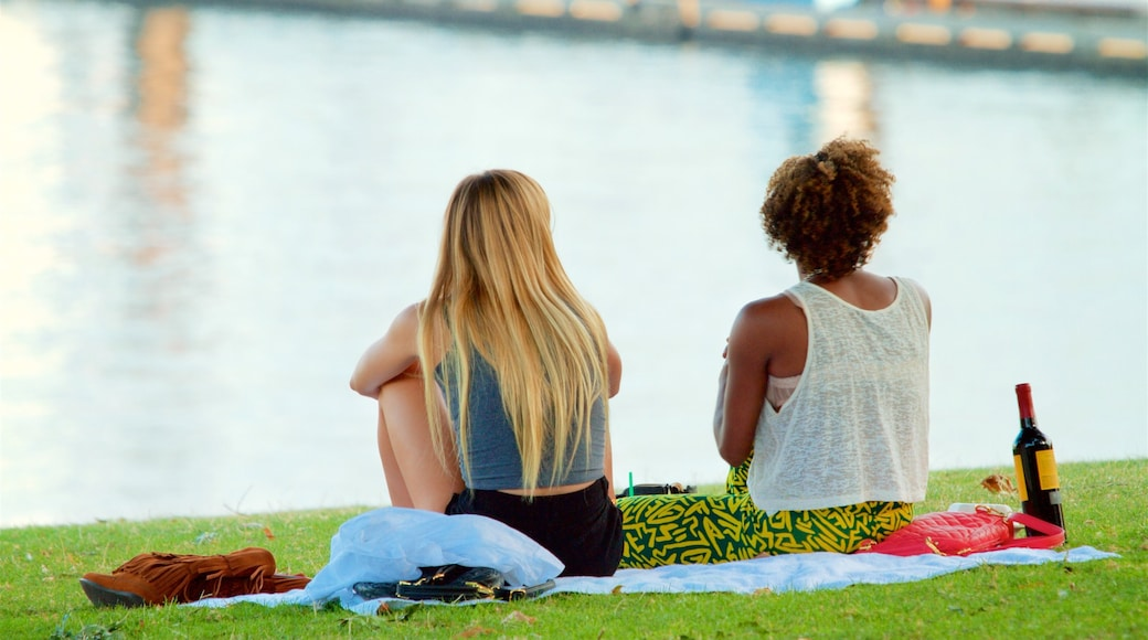 Tom McCall Waterfront Park showing picnicking as well as a couple