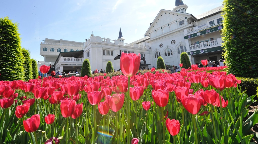 Churchill Downs which includes wildflowers, flowers and a park
