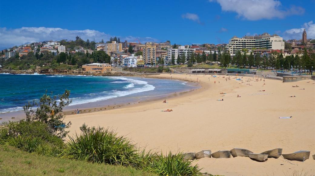 Coogee Beach featuring a coastal town, general coastal views and a sandy beach