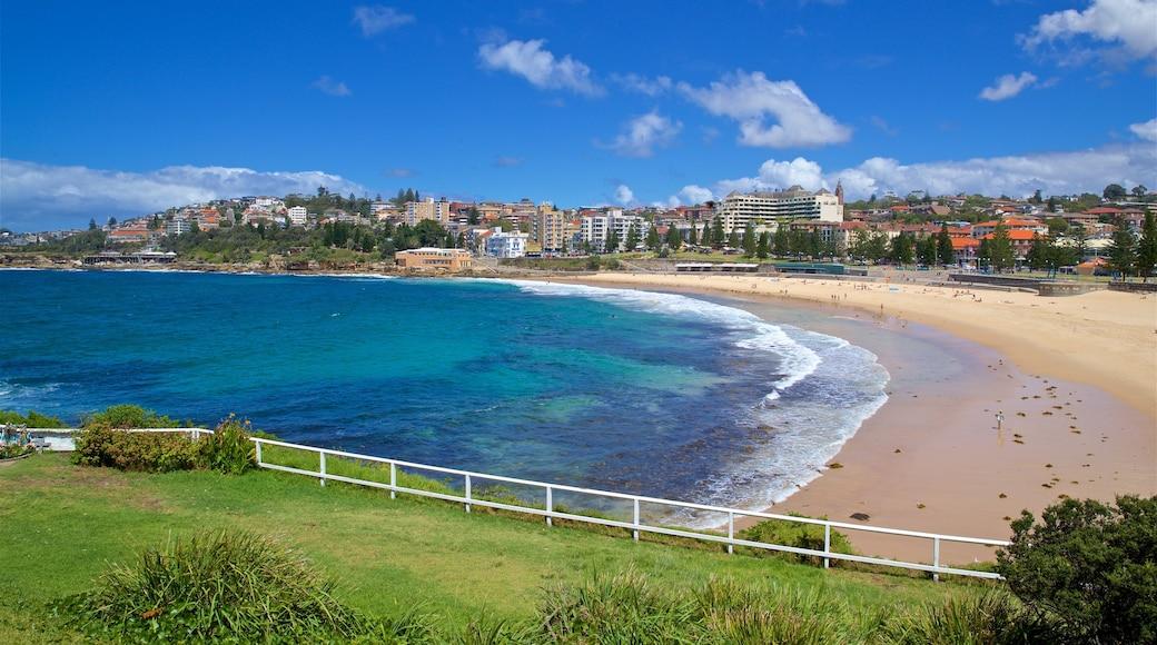 Coogee Beach showing a beach, general coastal views and a coastal town