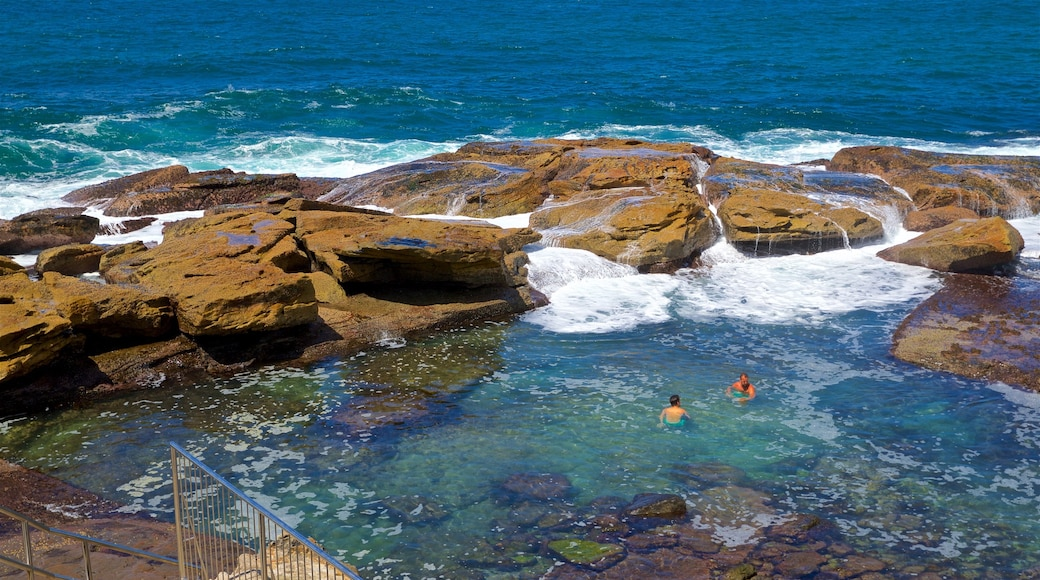 Coogee Beach featuring general coastal views, rugged coastline and swimming