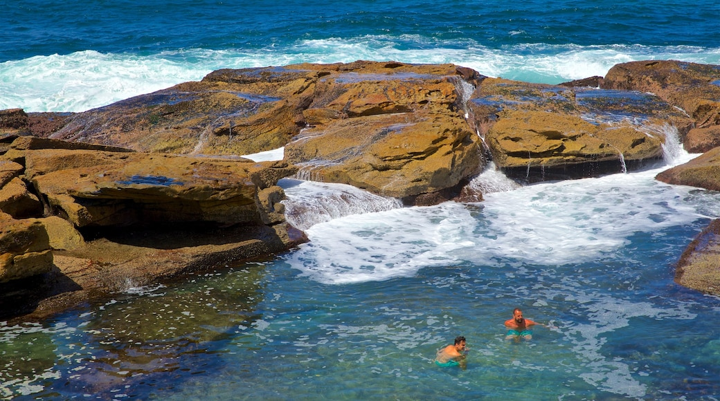 Coogee Beach showing rocky coastline, swimming and general coastal views
