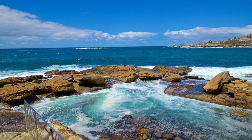 Coogee Beach showing general coastal views and rugged coastline