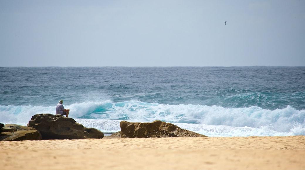 Tamarama Beach showing general coastal views and a beach as well as an individual male