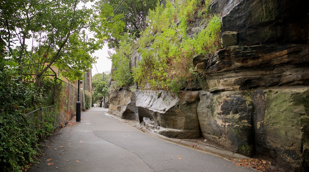 Circular Quay - The Rocks which includes a park