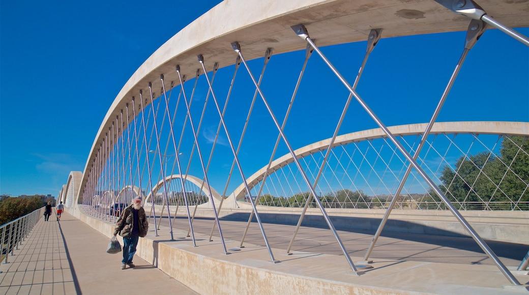Fort Worth montrant pont aussi bien que homme