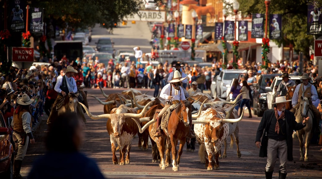 Fort Worth Stockyards showing a festival, land animals and horseriding