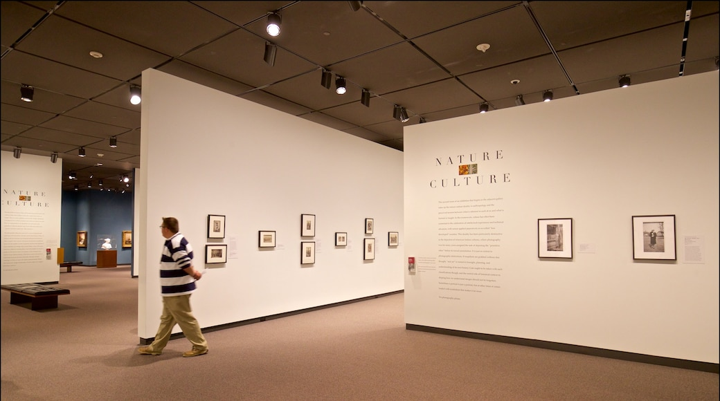 Amon Carter Museum featuring interior views and art as well as an individual male