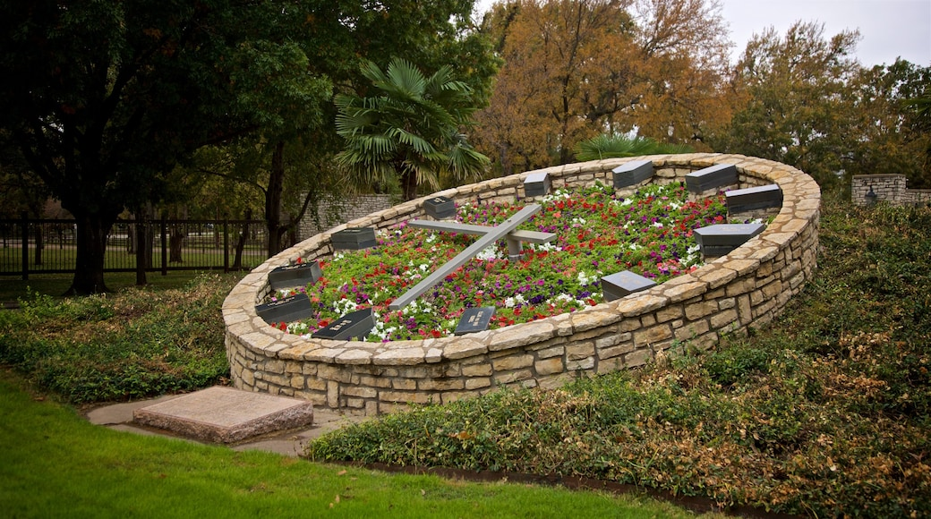 Fort Worth Botanic Garden showing wildflowers, a park and flowers