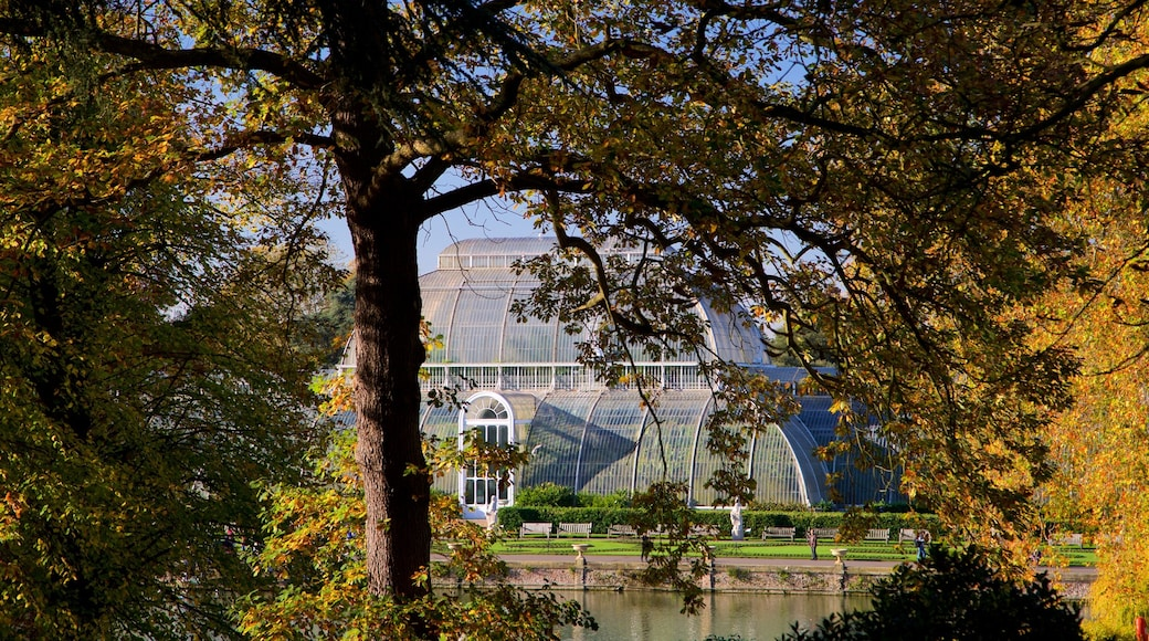 Royal Botanic Gardens featuring a park and a pond